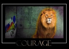 Courage, dog! Motivational Posters, Dogs, Animals, Animales, Animaux, Pet Dogs, Doggies, Animal, Animais