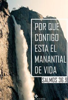 α JESUS NUESTRO SALVADOR Ω: ¿De qué tenemos sed en este momento de nuestra vid...