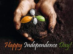 write my name on happy independence day greetings card pictures. beautiful india independence day quotes images with add test Independence Day India Images, Independence Day Hd Wallpaper, Independence Day Greeting Cards, 15 August Independence Day, Pakistan Independence, Message Wallpaper, Fb Status, Status Quotes, Republic Day