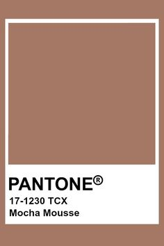 Pantone is your color partner for design, offering tools for color savvy industries from print to apparel to packaging. Known worldwide as the standard language for accurate color communication, from designer to manufacturer to retailer to customer. Pantone Swatches, Color Swatches, Pantone Colour Palettes, Pantone Color, Colour Pallette, Colour Schemes, Color Trends, Paleta Pantone, Brown Pantone