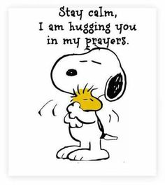 :) Woodstock Charlie Brown, Charlie Brown Quotes, Snoopy And Woodstock, Charlie Brown Peanuts, Snoopy Quotes Love, Peanuts Quotes, Snoopy Love, Cute Quotes, Stay Calm