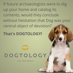 If future archaeologists were to dig up your home and catalog its contents, would they conclude without hesitation that #Dog was your central object of devotion? That's #Dogtology!