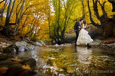 After wedding session - this looks out of a fairy tale