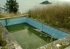 Abandoned Pool with a view.