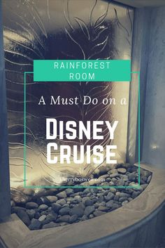 Psst! Here's a best kept secret for Disney Cruise Line. Grab a Rainforest Room pass for one day or length of cruise. They don't sell many, so get them before they are sold out. Spa heaven awaits with steam room/sauna, hot tubs and heated stone loungers. B