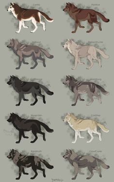 Semi-Realistic Wolf Adoptables Set 9 - OPEN by Therbis on DeviantArt