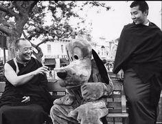 H.H. The 16th Karmapa