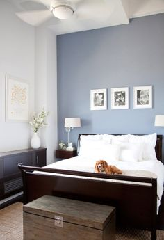 pretty blue color with white crown molding | Home | Pinterest | Blue ...