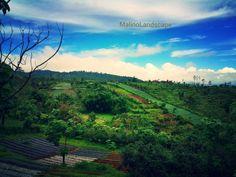 Malino highland-gowa sul-sel-Indonesia