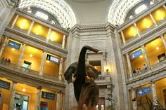 Natural History Museum...DC