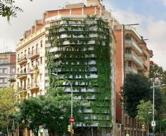 Beautiful, Innovative, and Sustainable: The Future of Green Architecture | Design on GOOD