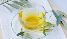 Wondering about olive leaf benefits? Consider that olive leaf extract has proven to be as effective in blood pressure medication and for lowering cholesterol, triglycerides, and blood sugar. Cholesterol Symptoms, Cholesterol Lowering Foods, Natural Blood Pressure, Lower Blood Pressure, Top 10 Home Remedies, Natural Remedies, Olive Leaf Benefits, Olive Leaf Tea, Olive Tree