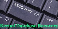 Database Recovery Software