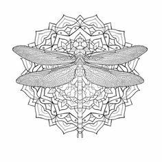 drawings dragonfly in mandala - Google meklēšana