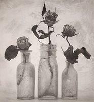(CD-370) - Cy DeCosse: Three Roses