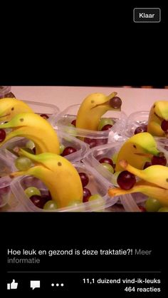 bananen dolfijnen en druiven