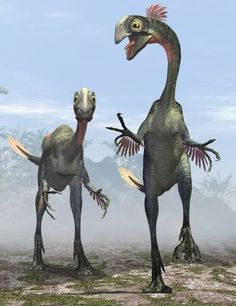 GIGANTORAPTOR | Description: Gigantoraptor