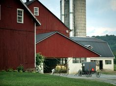 Image detail for -Many of the Amish have very nice-looking, nicely-kept homes and barns ...