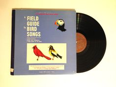 FALL SALE Double LP Album A Field Guide To by CharmCityRecords