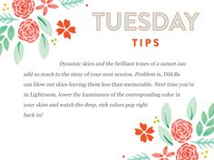 Bloom's Tuesday Tips  Another cool Adobe Lightroom tip is ready and waiting for you with today's Tuesday Tips! http://www.everythingbloom.com/tuesday-tips-69