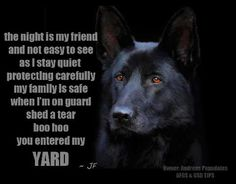 I'd feel safe...