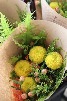 Fruit, Flowers, Plants, The Fruit, Flora, Plant, Royal Icing Flowers, Flower, Florals