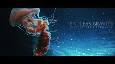 Can watch at these ocean creatures endlessly. It's like a live cosmos, unbelievable smooth moves, eternity and meditation. No single VFX used, this is magical nature.  Magic Lantern RAW 14bit video. Graded in Davinci Resolve. Music by Astrópılót. Poem by Dante Gabriel Rossetti 1869.  PS: This is 720p (HD) version.