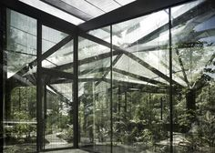 indoor garden 2: quality of light is incredible, contributes to ambiguity of inside/outside