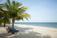 Barefoot Perfect! #Belize resorts #Belize vacations #Placencia