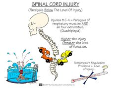 Spinal Cord Injury | Nursing Mnemonics and Tips