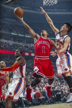 Rose vs Lin