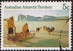 Australian Antarctic Territory 1984 Scenes Dog Team pulling Sledge Fine Used SG 64 Scott L61 Other Australian Antarctic territory Stamps HERE