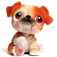 LPS#0046 BULLDOG Sitting position, white and brown fur, brown eyes, black nose