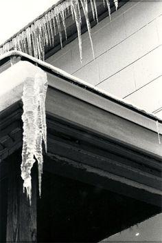 """""""Cold"""" Minneapolis, MN - 2010   * Black and White *  Film *  Deb Carneol Original"""
