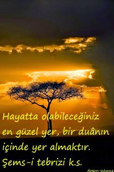 Dogan yılmaz - Google+ Word Sentences, Sufi Poetry, Allah, Lyrics, Wisdom, Inspiration, Te Amo, Photos, Presents