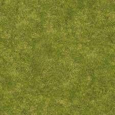 texture grass short