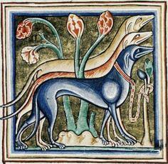Medieval Bestiary Dog
