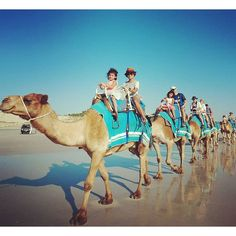 Fun camel ride while enjoying the natural beauty of Cable beach at Broome…