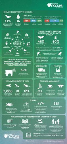 State of Nature 2019 Infographics - National Biodiversity Network Timeline Infographic, Free Infographic, Infographic Templates, Infographics, Ireland Beach, Ireland Travel, Sustainable Tourism, Sustainable Living, Ireland People