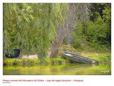 Parque Monasterio de Piedra | por josé gracia gonzález