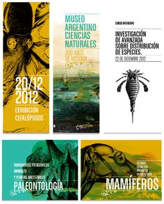 Museo Argentino de Ciencias Naturales by Lucas Rod, via Behance