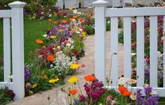 Tip #5: Add Fences around Delicate Areas: Picket fences are cute and can be painted all sorts of colors to match your landscape. Plant some pretty flowers around the fence to really make your front lawn pop! -- Tips for Landscaping with Dogs -- http://www.evergreenturf.com/tips-for-landscaping-with-dogs.php