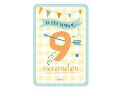 My Happy Moment: Ik ben vandaag 9 maanden! Verkrijgbaar als 18-delige set voor € 9,95 http://www.myhappymoments.nl/home/