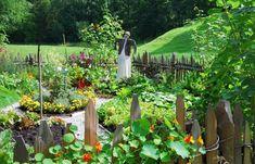 Wunderbar Gemüse Und Kräuter Aus Eigener Ernte Sind Nicht Nur Gesund Und Schmackhaft,  Sondern Auch Dekorativ