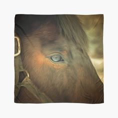 'Horse Eye Close Up.' Scarf by