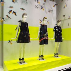 """#MSGM #SpringSummer2015 Window at @LaRinascente during Milan Fashion Week ~ #Milano #SS15 #Display #LaRinascente #MFW #MassimoGiorgetti 