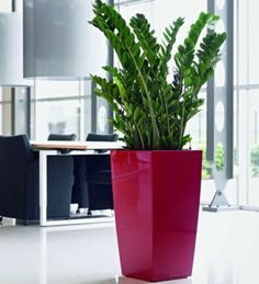 Cubico 40 Self Watering Planter by Lechuza