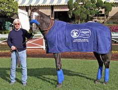 "Bob Baffert called champion Arrogate ""the greatest horse"" he's ever seen run. will retire to stud at Juddmonte U.S. near Lexington after his Nov. 4 Breeders' Cup bid, Juddmonte Farms announced Oct. 10. A fee will be released at a later date. 10/10/17"