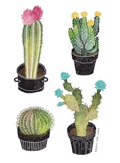 Cacti plants - Sanny van Loon • Illustration