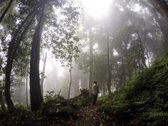 Parque Nacional Santa Bárbara - Honduras